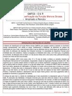 GMFCS instruções