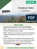 Gestion Ecosistemas Fr+ígiles