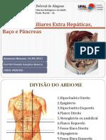 Fígado, Baço e Pâncreas.pptx