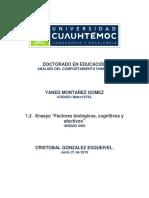 1.2. ENSAYO  Factores biológicos, cognitivos y afectivos.