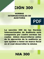 SECCIÓN 300.pptx