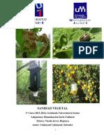 hongos citricos.pdf