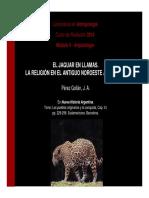EL_JAGUAR_EN_LLAMAS