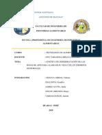 APIO DESHIDRATADO FINAL  2
