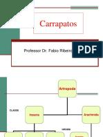 241747849-Carrapatos-pdf.pdf
