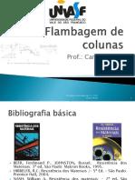 FLAMBAGEM DE COLUNAS