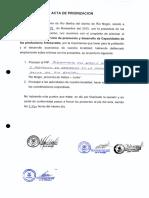ACTAS RIO BERTHA20160112_09134355