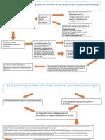 diagrama de flujo La reflexión sobre la lengua en el entorno de las prácticas sociales del lenguaje