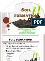 soil formation.pptx