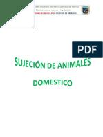 sujecion miguel.docx