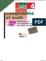 Les Carrés DSCG 4 - Comptabilité et audit 2014-2015.pdf