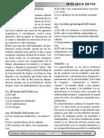 R.V.comprención lectura 3  pdf