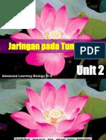 CRC NEW Bab 2 JARINGAN PADA TUMBUHAN