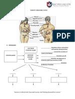 2 - Endocrine [www.cmecde.com].pdf