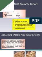 IMBIBISI PADA KACANG TANAH.pptx