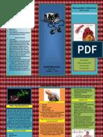 MI Brochure