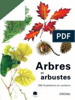 Arbres Et Arbustes - Grund