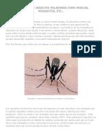 Repelentes de insectos de origen natural. Repelentes ecológicos