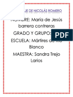 REPORTAJE DE NICOLÁS ROMERO
