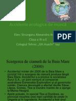 Accidente Ecologice de Muncă