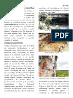 A PRÉ-HISTÓRIA DA AMAZÔNIA.pdf