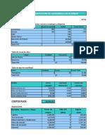 Determinacion Costo Unitario Para Carambola Almibar