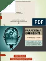 Infografia .paradigma emergente (1)