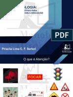 M1_Aula4_Atenção e Casos clinicos_Dra. Priscila Lima C F Sertori_Apresentação