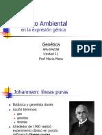 11.EfectoAmbiental.pdf