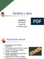 10.Gentica&Sexo