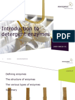 2 Introduction_to_detergent_enzymes.pdf
