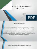 QUÉ ES EL TRANSPORTE ACTIVO