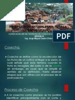 RECEPCION DE MATERIA PRIMA PARA LA EXPORTACION SESION 01