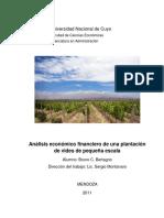 ANALISIS ECONOMICO PRODUCCION A PEQUEÑA ESCALA.pdf