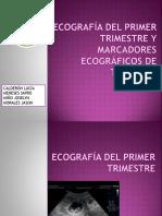 tema3primertrimestre-150514152813-lva1-app6891.pdf