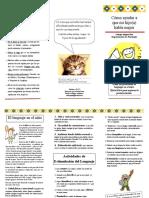 58917497-Triptico-Problemas-de-Lenguaje.pdf