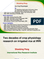 Two decades of crop physiology research on irrigated rice at IRRI
