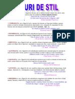 1_figuri_de_stil
