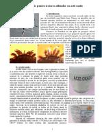 Gabriel-Petruc_Ghid-practic-pentru-tratarea-albinelor-cu-acid-oxalic.v3