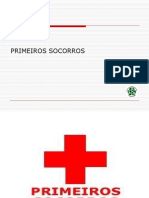 SME - PRIMEIROS SOCORROS