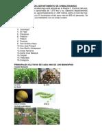 CARACTERISTICAS DEL DEPARTAMENTO DE CHIMALTENANGO.docx