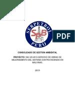 INFORME DE GESTION AMBIENTAL.pdf