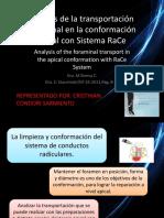 Análisis de la transportación foraminal en la conformación