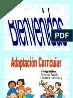 ADAPTACION CURRICULAR 2