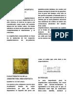 Arquitectura renacentista del siglo xv