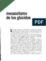 LECTURA DE GLUCIDOS