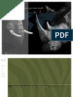 annual_report_2019.pdf