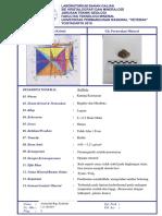 DESC Pyrite.docx
