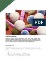 Bakteremia.docx