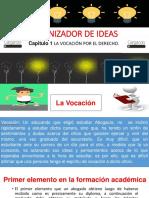 ORGANIZADOR DE IDEAS.pptx